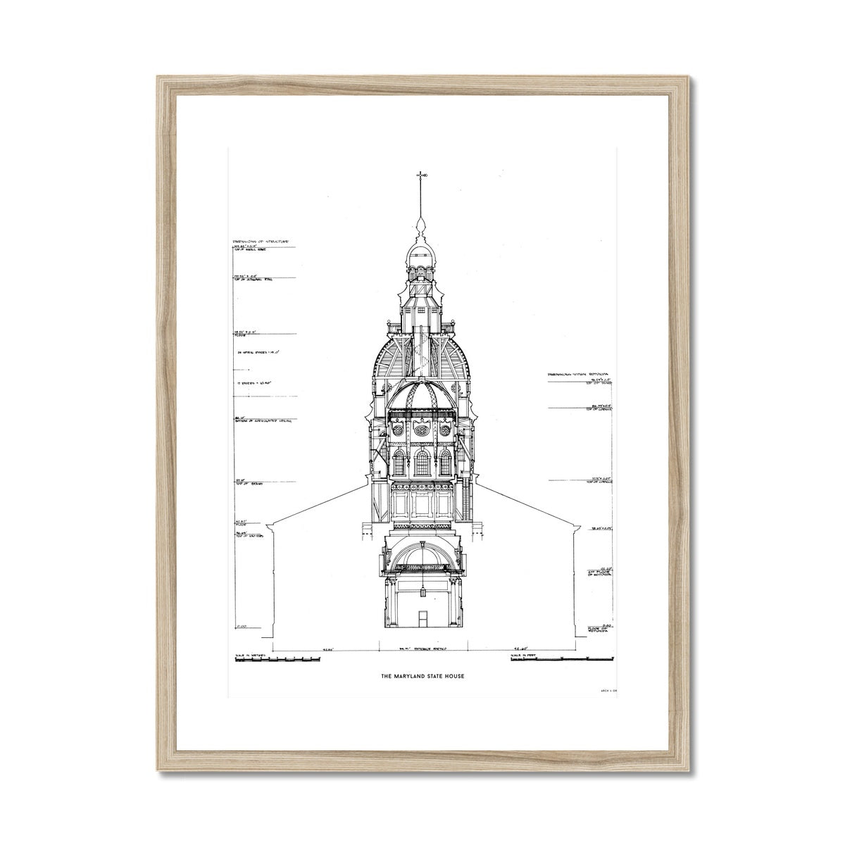 The Maryland State House - Northwest Elevation Cross Section - White -  Framed & Mounted Print