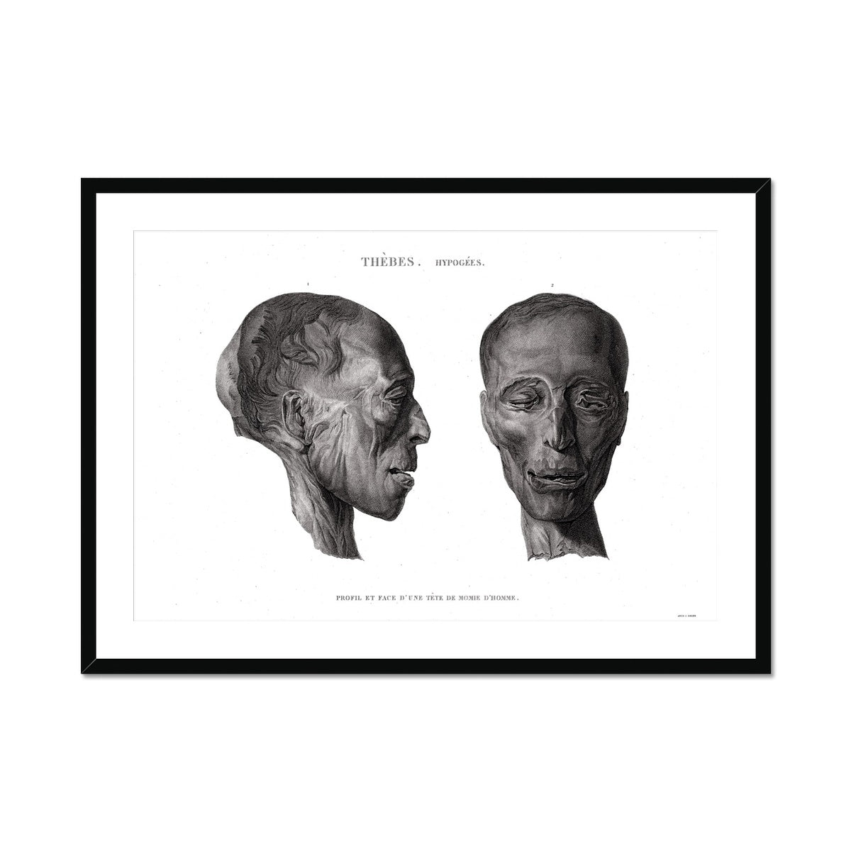 Mummy Head 1 - Egypt -  Framed & Mounted Print