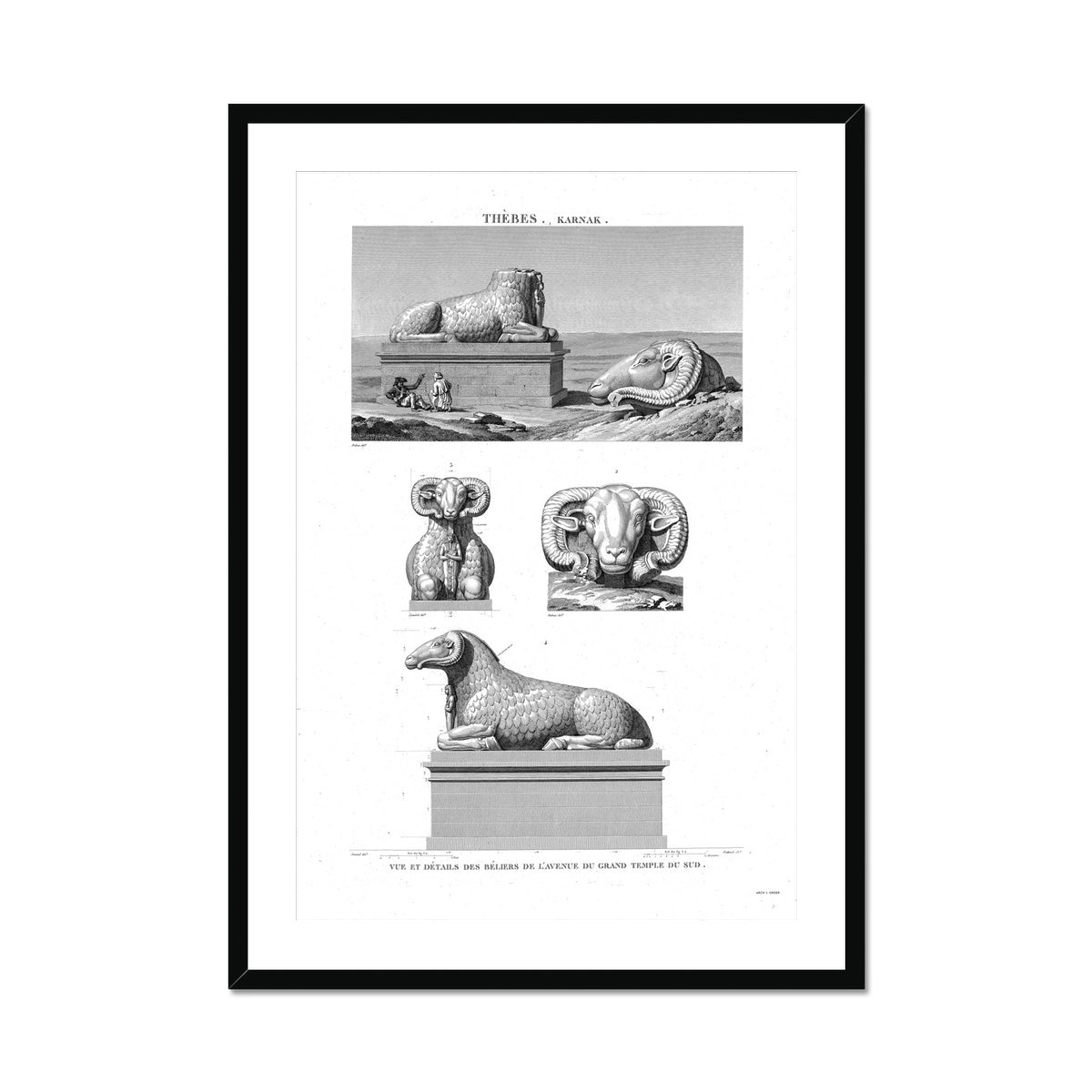 Rams Detail - Karnak - Thebes Egypt -  Framed & Mounted Print