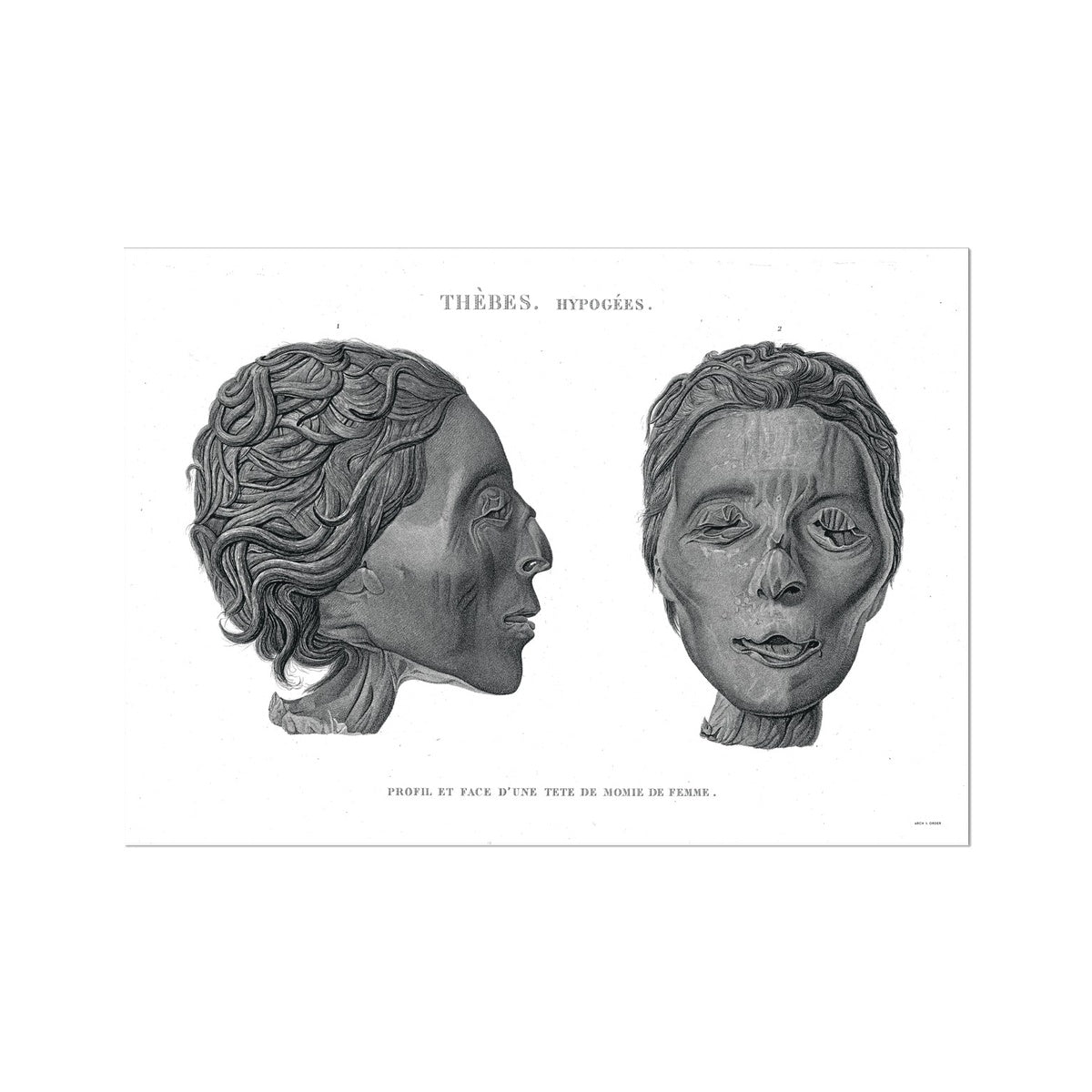 Mummy Head 2 - Egypt -  Etching Paper Print