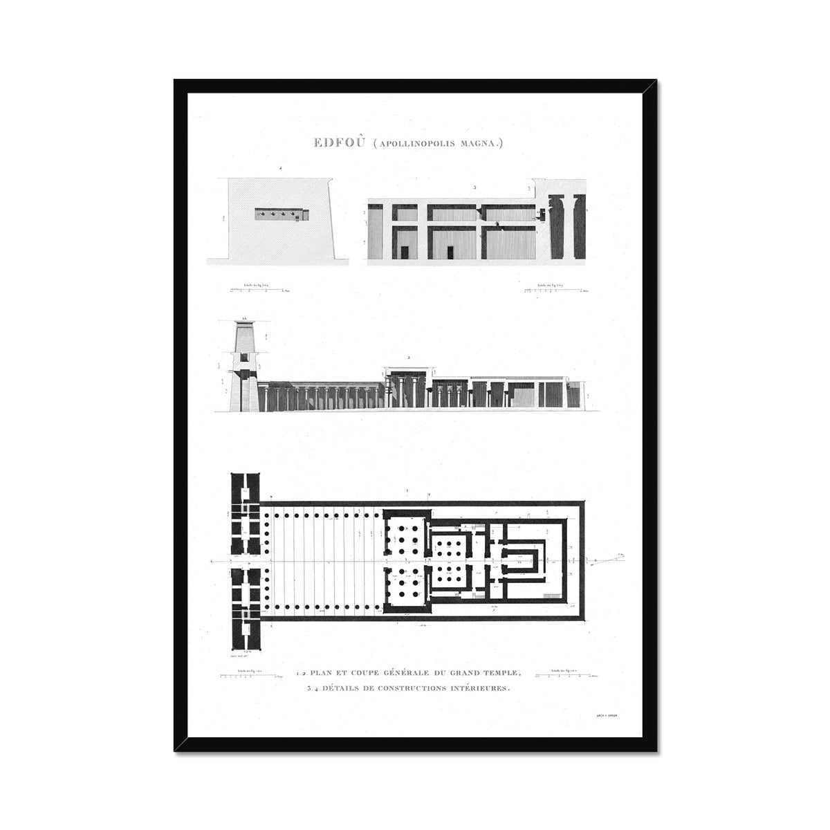 Temple of Horus Elevation and Floorplan - Edfu Egypt -  Framed Print