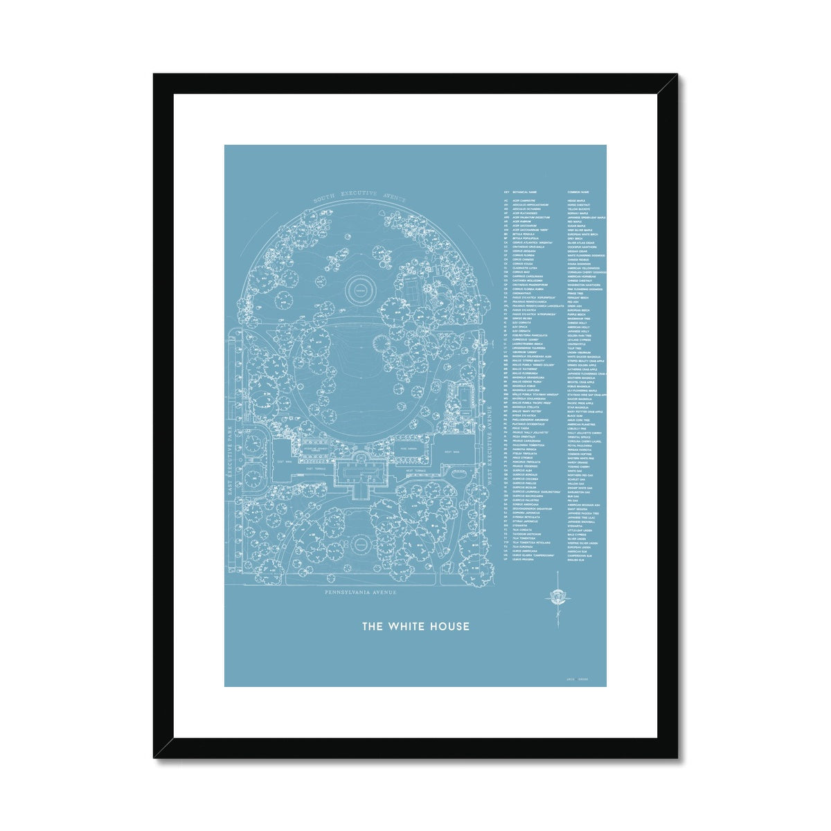 The White House Landscaping Plan - Blue -  Framed & Mounted Print