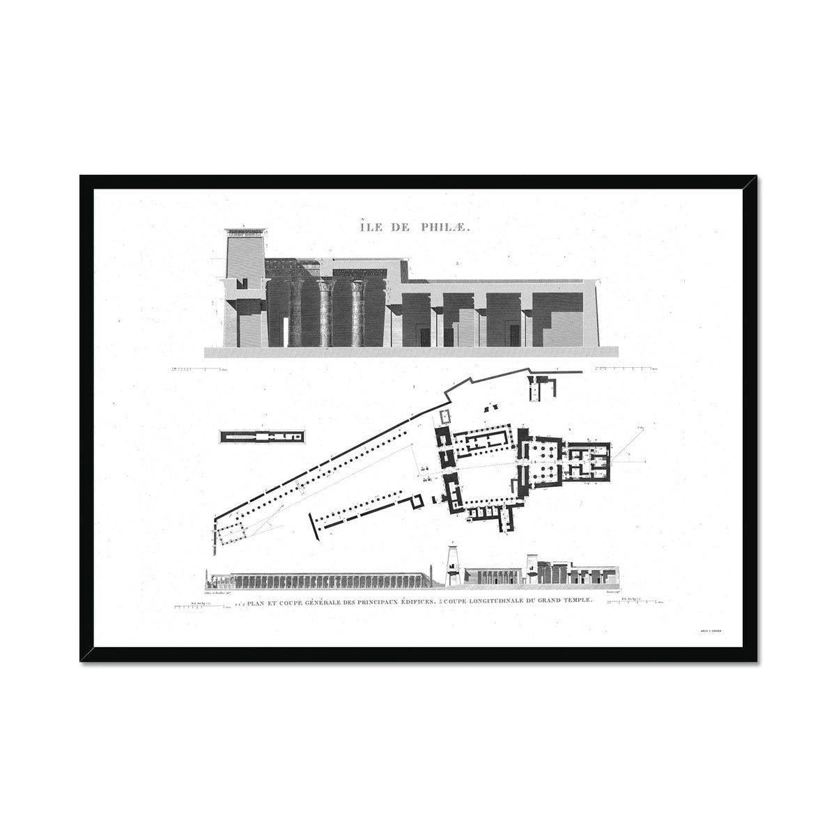 The Temple of Isis Plan and Cross Section - Philae Egypt -  Framed Print