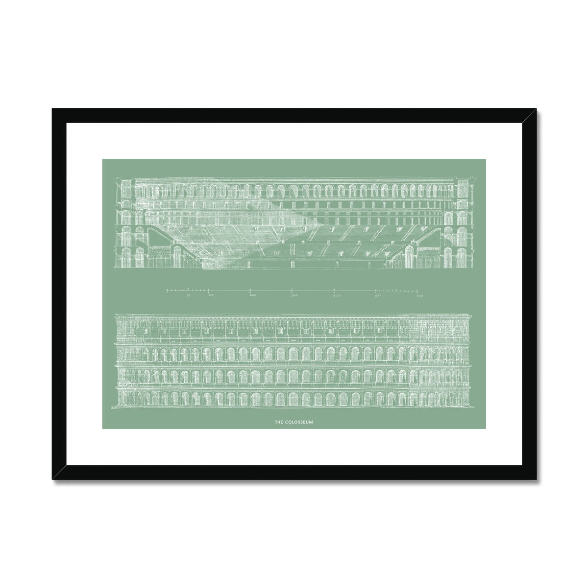 The Colosseum - Primary Elevation and Cross Section - Green -  Framed & Mounted Print
