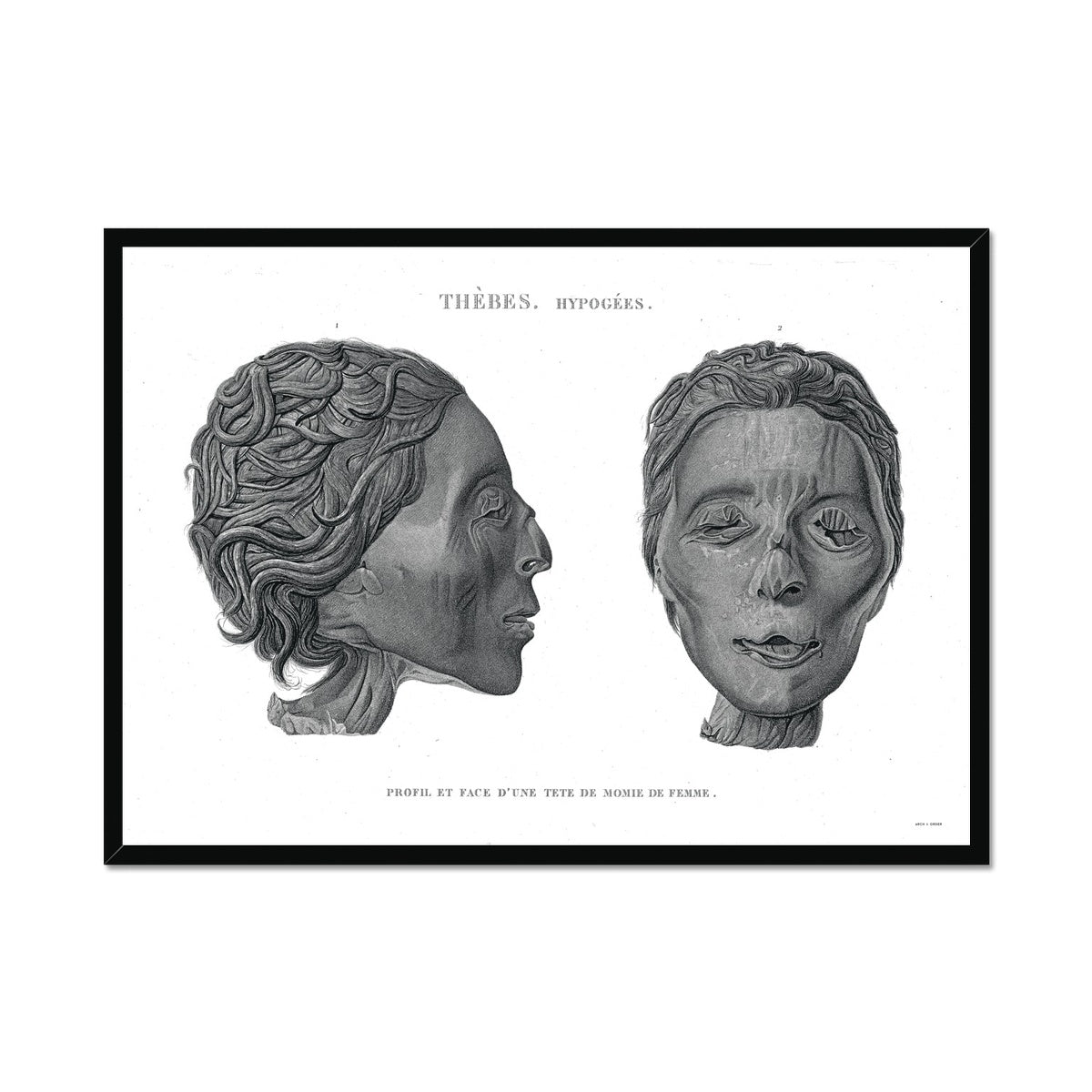 Mummy Head 2 - Egypt -  Framed Print