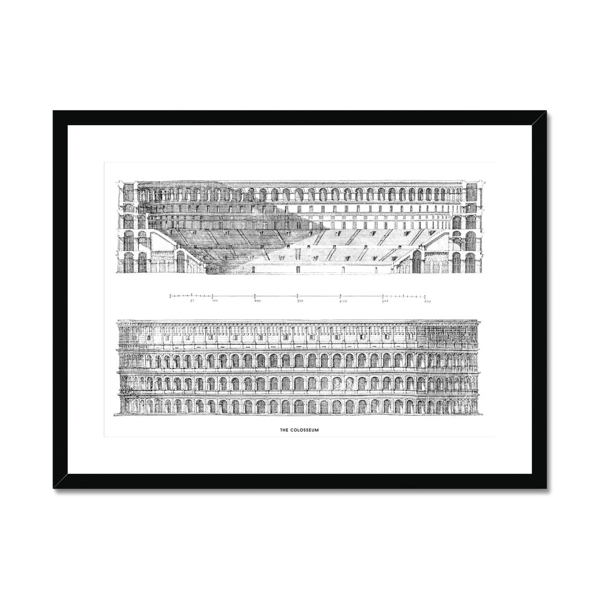 The Colosseum - Primary Elevation and Cross Section - White -  Framed & Mounted Print