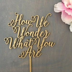"How We Wonder What You Are Cake Topper, 7""W"