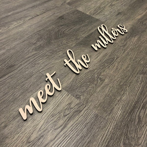 Personalized Meet the Last Name Sign
