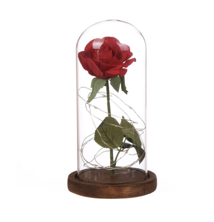 Beauty And The Beast Prestige® Enchantment Rose