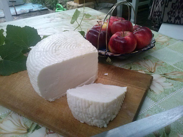 Circassian cheese