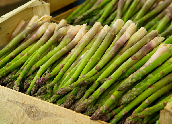 Asparagus is known as kuşkonmaz in Turkish