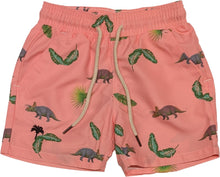 Load image into Gallery viewer, Kids Riviera Swim Shorts- Pink Dino