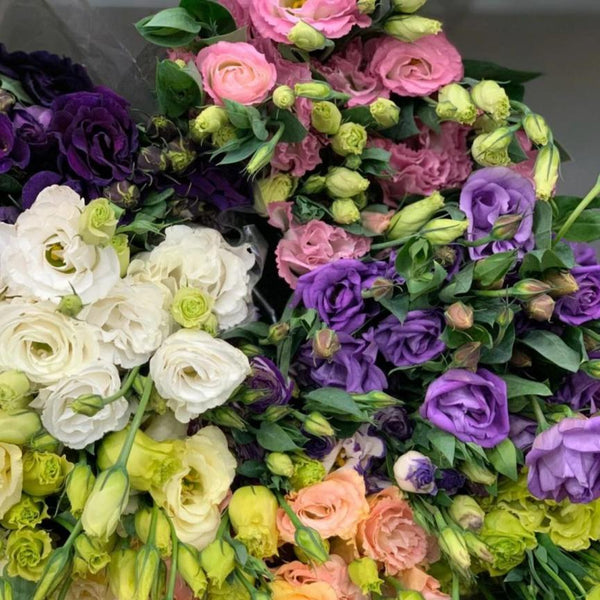 Lisianthus - You Floral