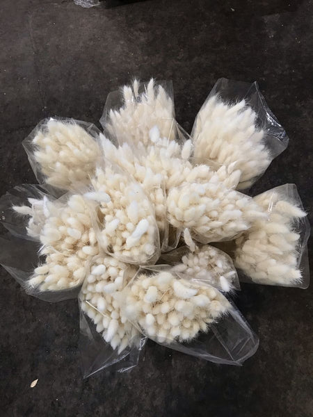 Bunny Tails - You Floral