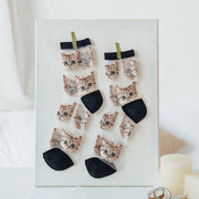Crystal Silk Tide Socks