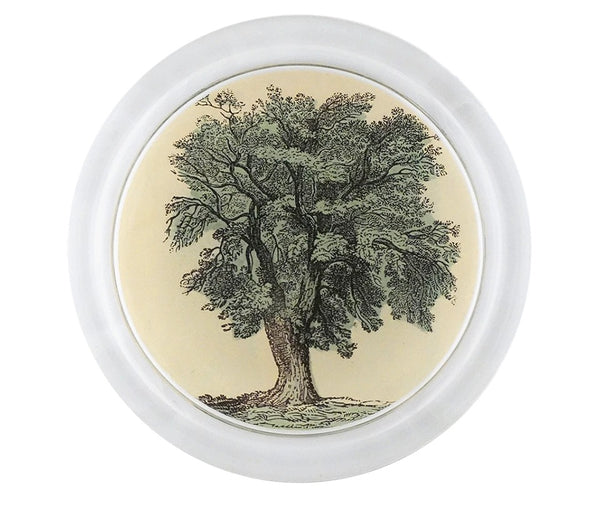 Oak Tree Coaster, 6""