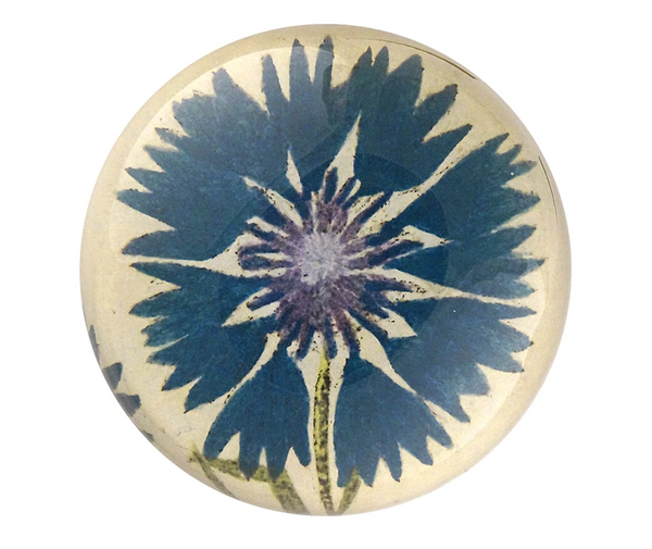 Blue Corn Flower Paperweight