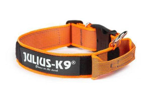Julius-K9 Color & Gray<sup>&reg;</sup> Collar with Handle, Safety Lock and Interchangeable Patch