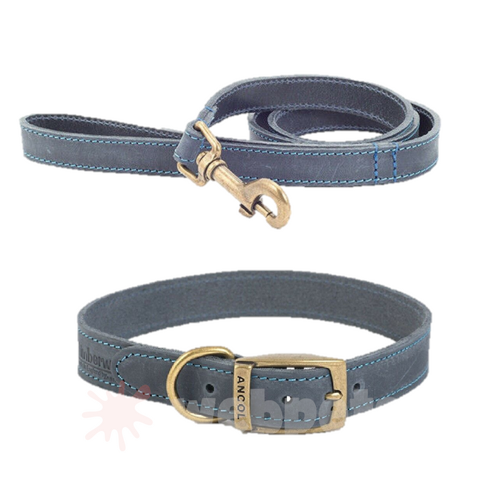 Ancol Timberwolf 1m Leather Lead & Collar Set - Size 6 Collar Blue