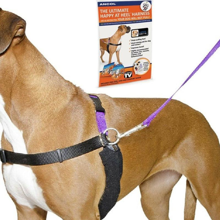 Ancol Happy At Heel Harness And Lead Set Various Sizes