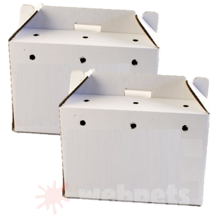 PPI Cardboard Animal Carrier Large 460x255x320mm