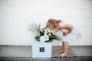 Flowers | Boxed Flowers