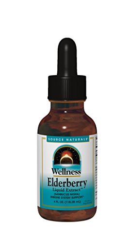 Source Naturals Wellness Elderberry Liquid Extract For Immune System Support   Sambucus Nigra   4 Fl