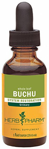 Herb Pharm Certified Organic Buchu Liquid Extract for Urinary System Support - 1 Ounce