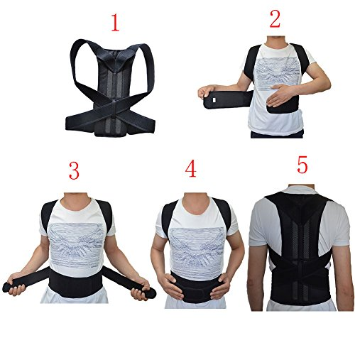 Back Support Belts Posture Corrector Back Brace Improves Posture and Provides For Lower and Upper Back Pain Men and Women (L)
