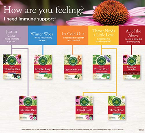 Traditional Medicinals Organic Echinacea Plus Elderberry Seasonal Tea, 16 Tea Bags (Pack Of 6)