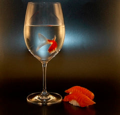 Fish in a Glass and Sushi