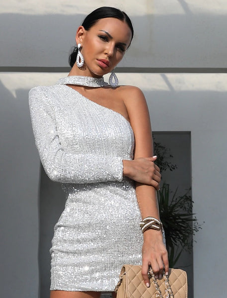 Evelyn Belluci - Silver Sequin Party Dress