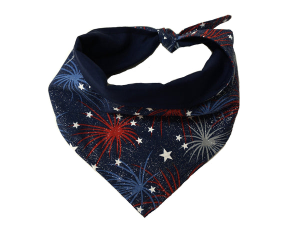 Patriot- Dog Bandana in American Design for Memorial Day or 4th of July Celebration