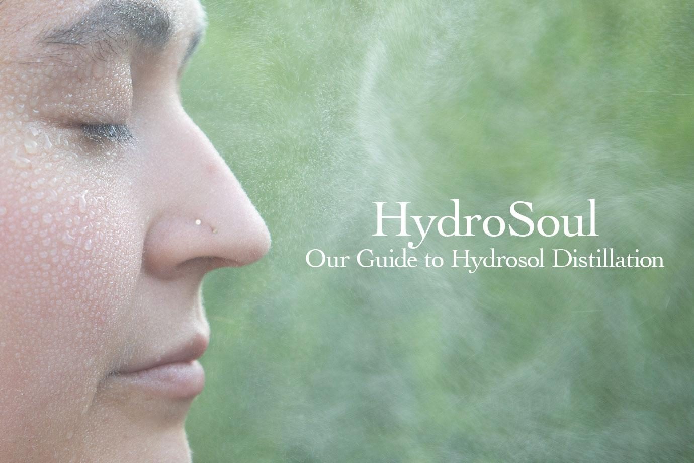 HydroSoul Skin Care Resources - evanhealy