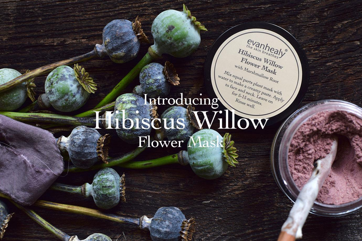 Introducing Hibiscus Willow Flower Mask