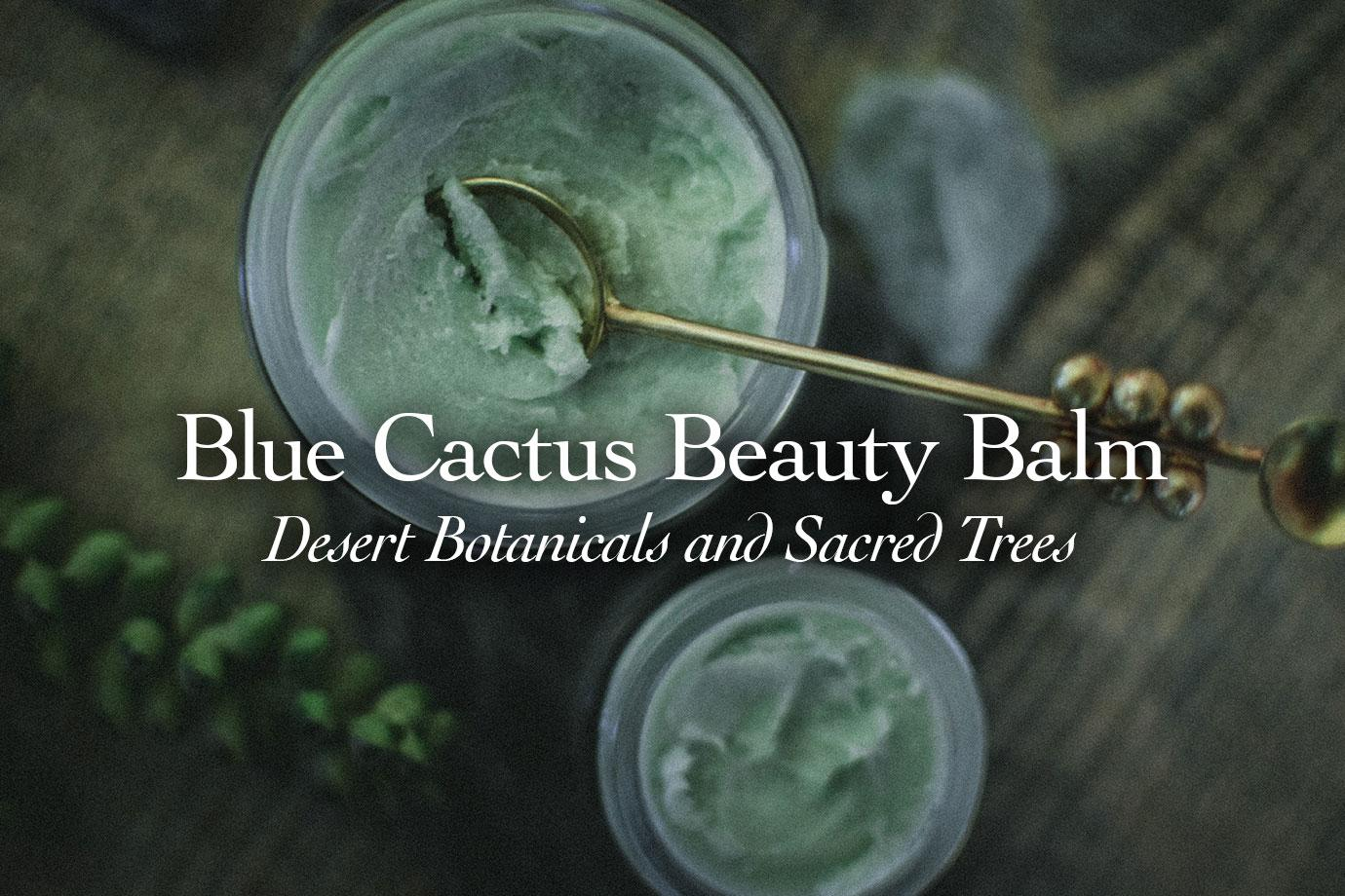 Blue Cactus Beauty Balm Desert Botanicals and Sacred Trees