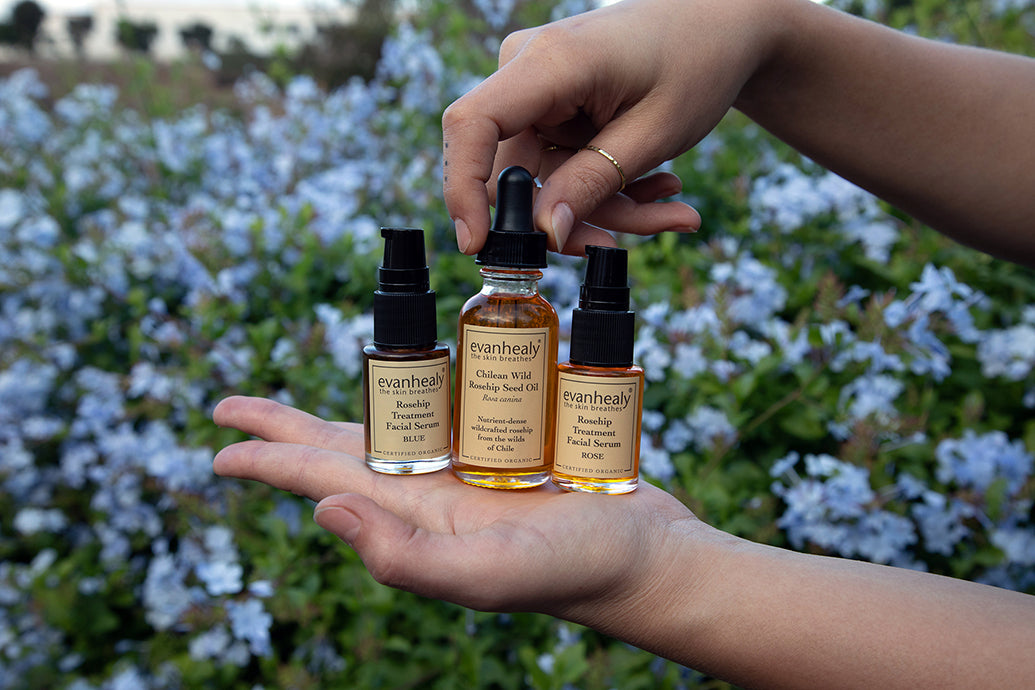 Three evanhealy rosehip products on the hand