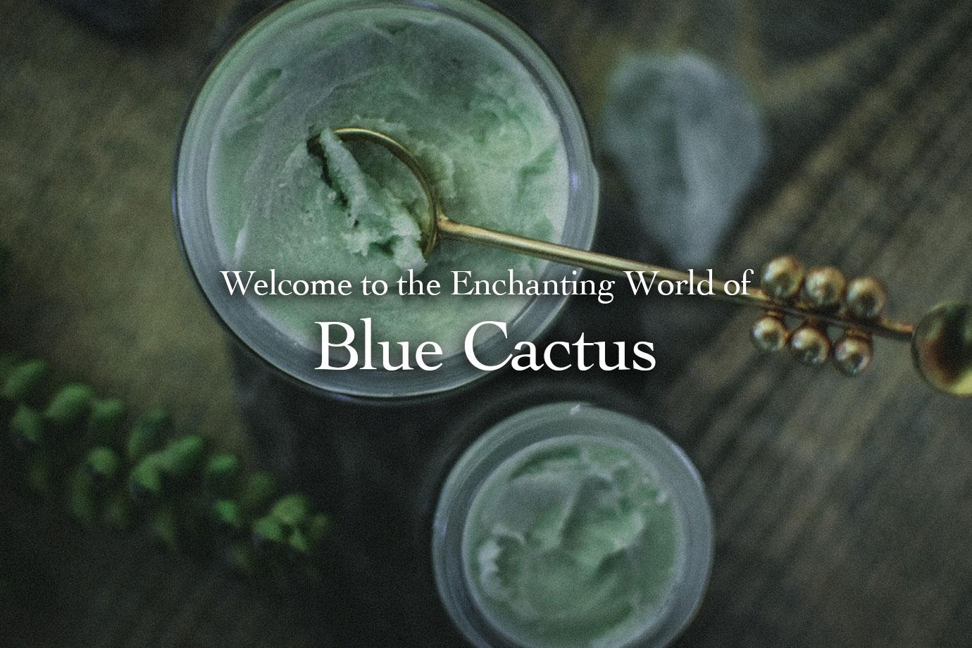 Welcome to the Enchanting World of Blue Cactus