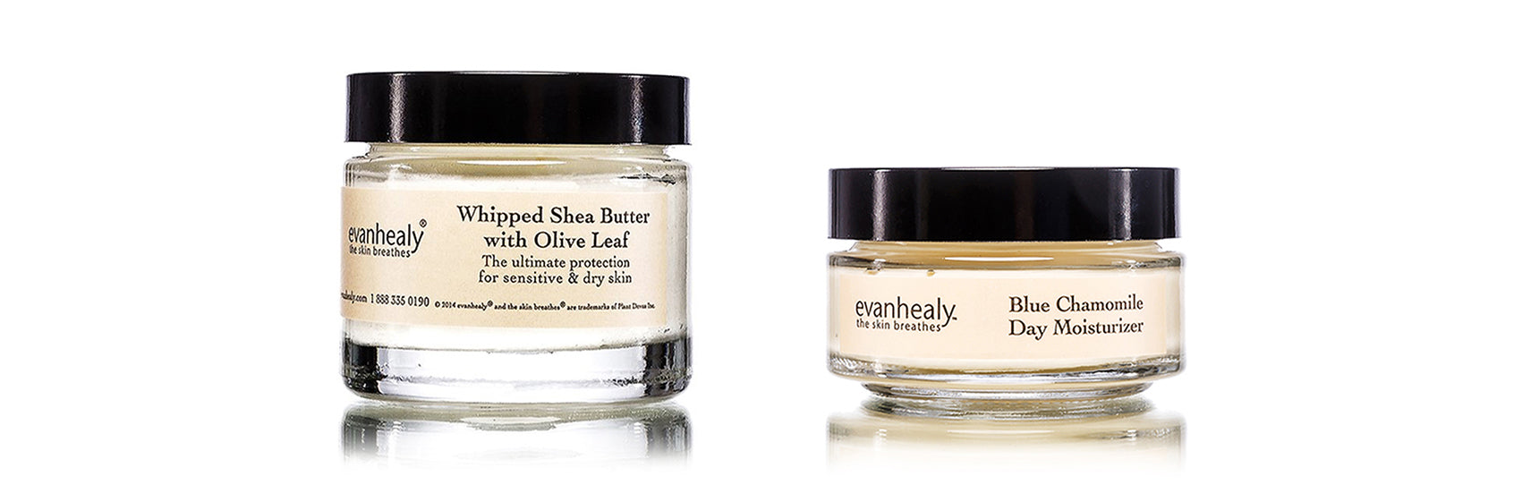 evanhealy Whipped Shea Butter with Olive Leaf and Blue Chamomile Day Moisturizer