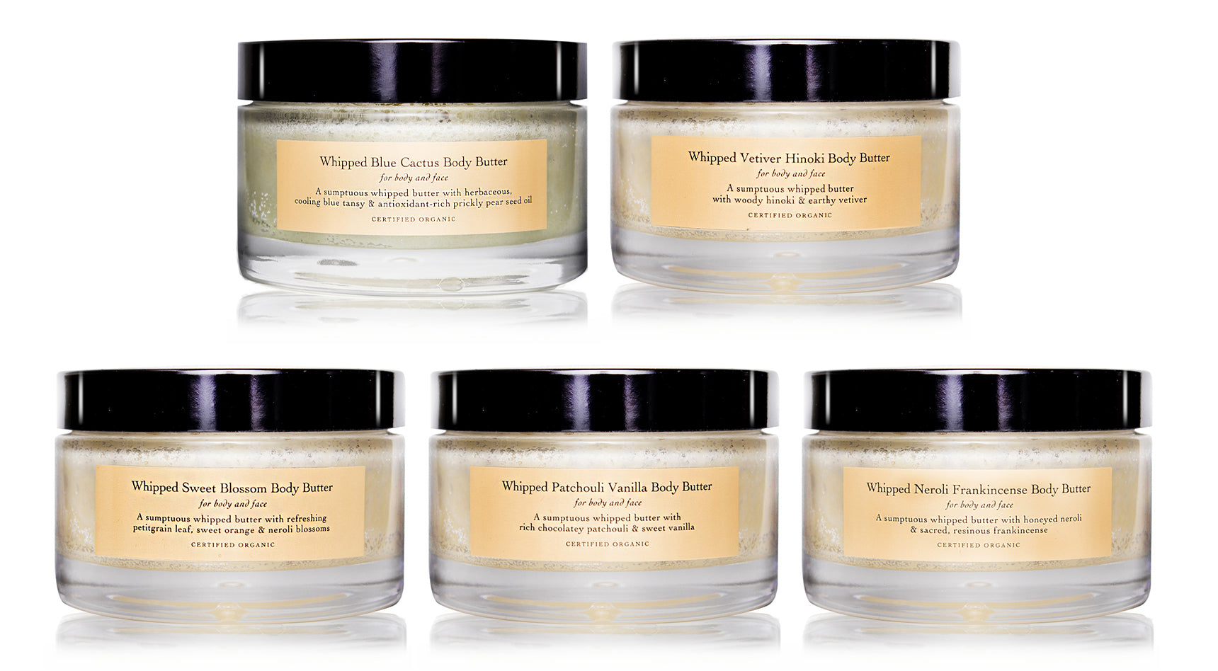 Where to buy jojoba product in evanhealy - Body Butter