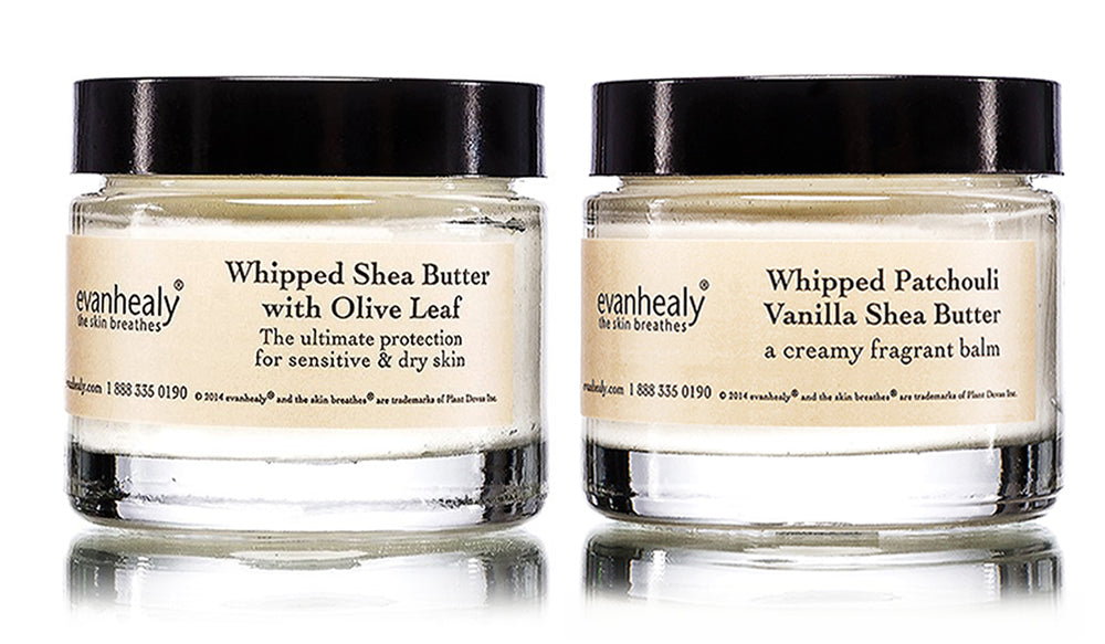 evanhealy whipped shea butter