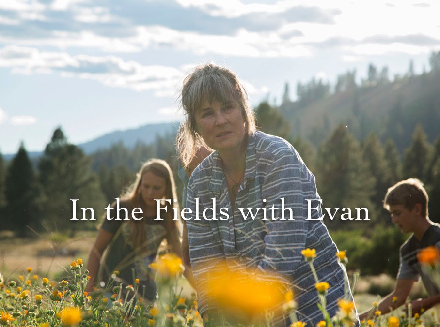 In the Fields with Evan