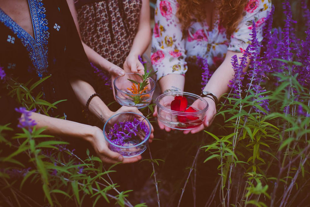 Flower Essence Alchemy : An Introduction to Sacred Plant Medicine