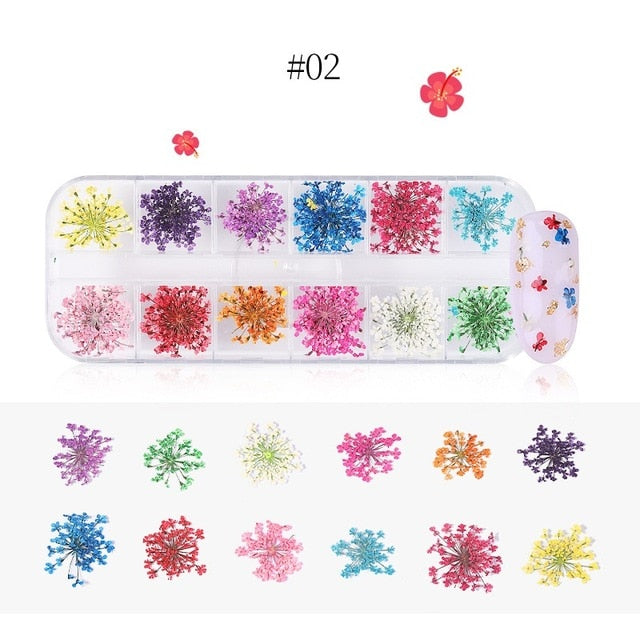 1 Box 3D Dried Flower Nail Decoration Natural Floral Sticker/DIY Nail Art Decals Jewelry