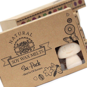 Vanilla Nutmeg - Box of 6 Wax Melts