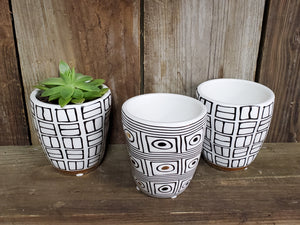 "Black and White Planter (with or without 1"" Plant)"