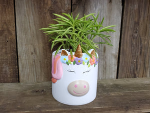 "Ceramic Unicorn Planter (with or without 4"" Plant)"