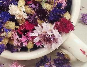 Dried Bachelor Button Flowers