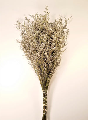Dried Limonium Flowers