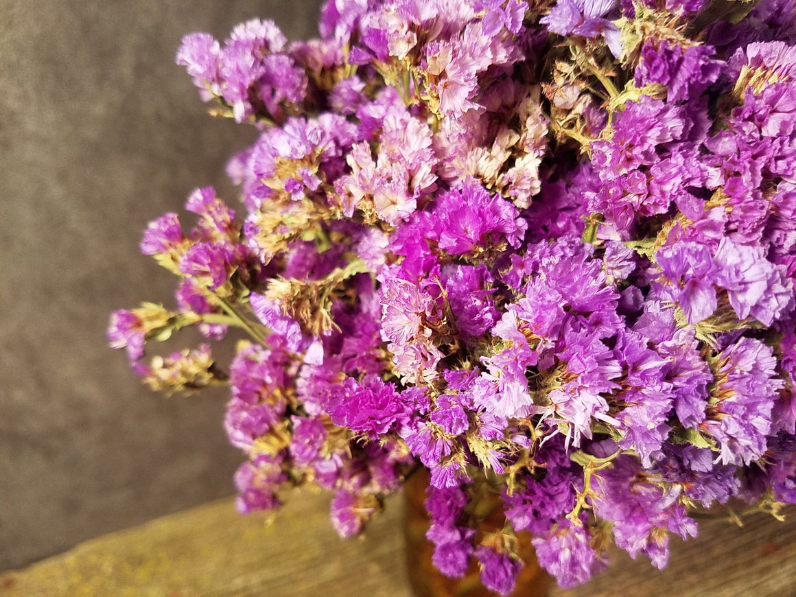 Dried Purple Statice Flowers